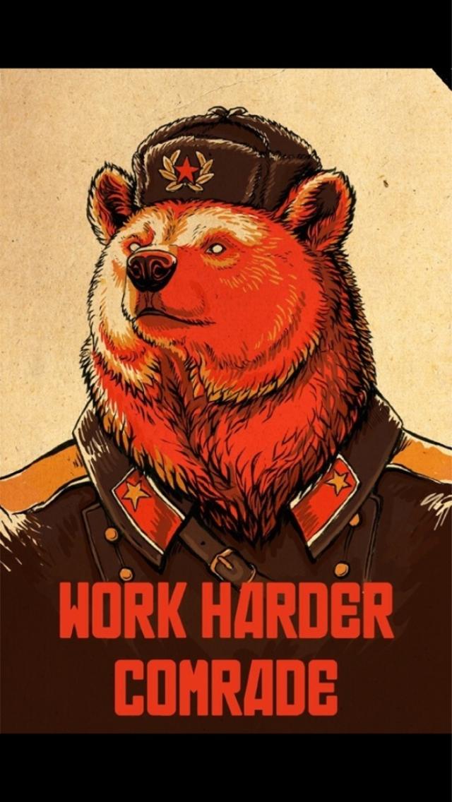 Αντιμέτωπος με την αρκούδα..